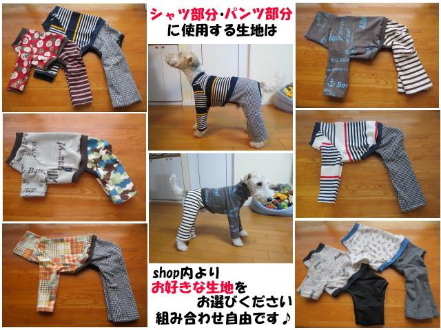 画像4: ハイネックTシャツ+半ズボン (イタグレサイズ)